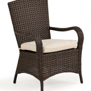 Alexandria Dining Arm Chair